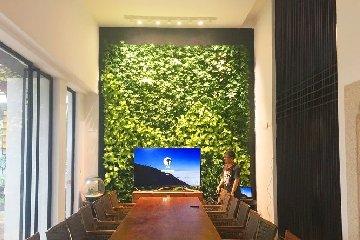 园林公司室内绿植墙